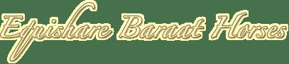 Equishare Baraat Horses